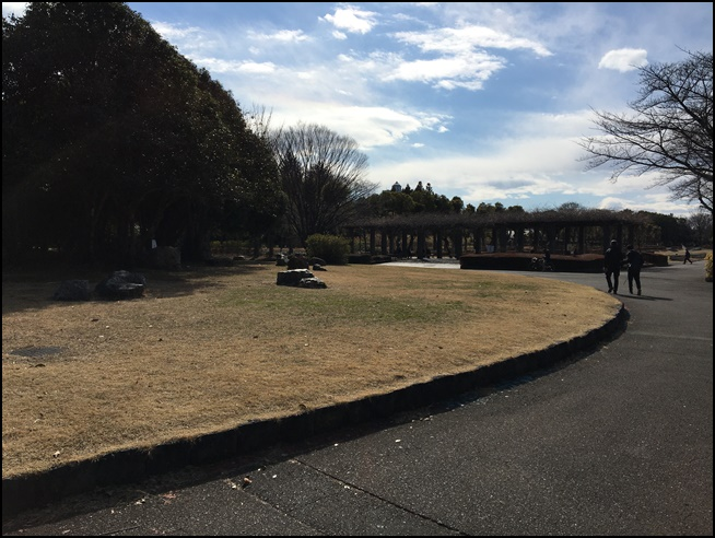 tokorozawapark