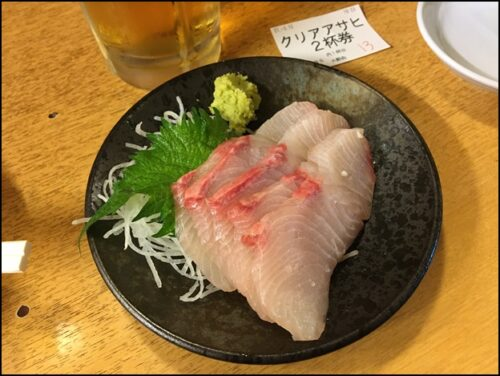 sashimi 今日の刺身