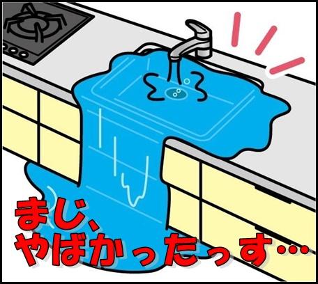 kitchinmizumore キッチンシンク 水漏れ つまり