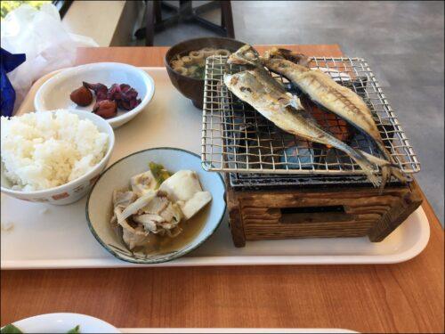 yakisakana 朝食 焼き台で魚